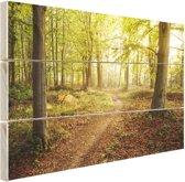 Een weg door het bos Hout 30x20 cm - klein - Foto print op Hout (Wanddecoratie)