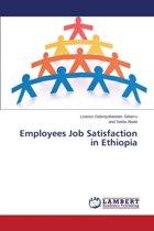 Employees Job Satisfaction in Ethiopia
