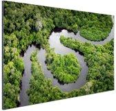 Regenwoud en Amazone Brazilie Aluminium 90x60 cm - Foto print op Aluminium (metaal wanddecoratie)