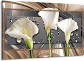 Schilderij   Canvas Schilderij Bloemen, Modern   Grijs, Bruin   140x90cm 1Luik   Foto print op Canvas