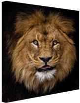 Leeuw portret fotoafdruk Canvas 60x80 cm - Foto print op Canvas schilderij (Wanddecoratie woonkamer / slaapkamer) / Dieren Canvas Schilderijen