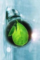 Leaf in a Lightbulb Journal