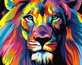 Schilder op Nummer Regenboog Leeuw, Artventura 16,5 x 13 cm