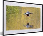 Foto in lijst - Reflectie van een vliegende slobeend fotolijst zwart met witte passe-partout 60x40 cm - Poster in lijst (Wanddecoratie woonkamer / slaapkamer)
