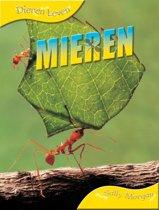 Dieren leven - Mieren