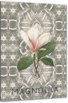 Magnolia II - 40x60 cm - Anne Waltz - PixaPrint - WE-0070-1