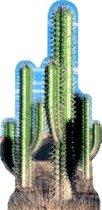 Groot decoratie bord cactus
