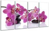 Glasschilderij Orchidee   Paars, Wit   160x80cm 4Luik   Foto print op Glas    F006152
