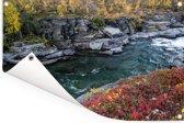 Wilde bloemen langs een rivier in het Nationaal park Abisko Tuinposter 60x40 cm - klein - Tuindoek / Buitencanvas / Schilderijen voor buiten (tuin decoratie)