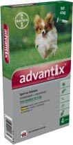 Advantix Spot On 40/200 tot 4 kg - 4 pip