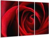 Glasschilderij Roos   Rood, Zwart   120x80cm 3Luik   Foto print op Glas    F000671