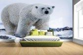 FotoCadeau.nl - Portret van een ijsbeer Fotobehang 380x265