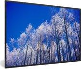 Foto in lijst - Besneeuwde bomen in het Nationaal park Santa Fe in Panama fotolijst zwart 60x40 cm - Poster in lijst (Wanddecoratie woonkamer / slaapkamer)