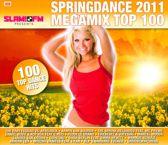 Springdance 2011 Megamix Top 100