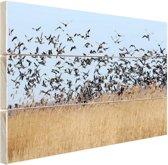Groep ganzen Hout 120x80 cm - Foto print op Hout (Wanddecoratie)