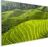 Bovenaanzicht van de Rijstterrassen van Lóngjĭ in China Plexiglas 120x80 cm - Foto print op Glas (Plexiglas wanddecoratie)
