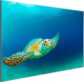 FotoCadeau.nl - Close-up foto van groene zeeschildpad Aluminium 90x60 cm - Foto print op Aluminium (metaal wanddecoratie)