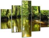 Glasschilderij Natuur | Groen, Bruin | 100x70cm 5Luik | Foto print op Glas |  F001340