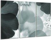 Glas schilderij Bloem | Grijs, Groen | 120x80cm 3Luik | Foto print op Glas |  F006325