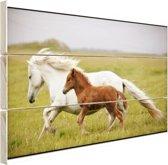 Paard en veulen rennen Hout 30x20 cm - klein - Foto print op Hout (Wanddecoratie)