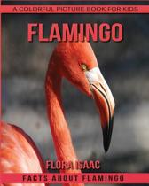 Facts about Flamingo a Colorful Picture Book for Kids