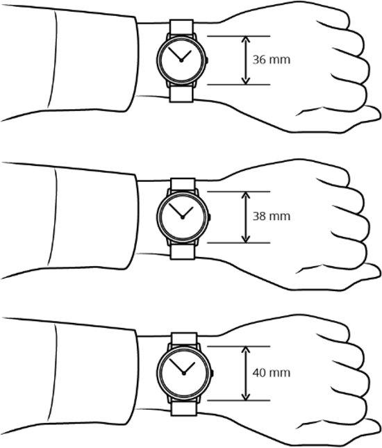 Skagen Holst Large Horloge