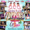 Toppers In Concert 2015 (CD)