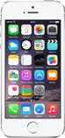 Apple iPhone 5s - 32GB - Zilver