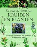 De magische kracht van kruiden en planten
