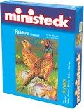 Ministeck: Fazanten