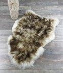 Lamsvachtje - Vloerkleed Mouflon - Creme  Bruin - Luxe Uitstraling Uniek - 100% ECHT Schapenvachtje - 110 x 60 cm  - Prachtig Vol Haar - Zitkussen - Bankbedekking