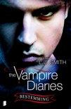 Vampire Diaries 10 - Bestemming