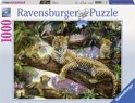 Ravensburger Trotse luipaardmoeder - Puzzel van 1000 stukjes