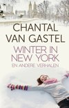 Winter in New York en andere verhalen