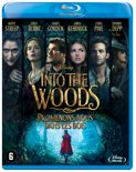 Into The Woods BD NL/FR