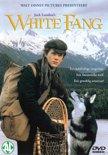 WHITE FANG DVD NL