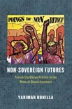 Non-Sovereign Futures