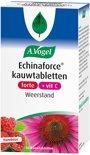 A.Vogel Echinaforce forte + vitamine C - 60 KauwTabletten - Voedingssupplement