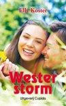 Westerstorm