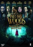 Into The Woods DVD NL/FR