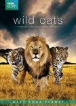 BBC Earth - Wild Cats