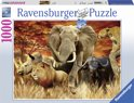 Ravensburger The big five - Puzzel van 1000 stukjes