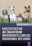 Konzentration Auf Zahlen Fur Die Wiederherstellung Des Organismus Der Hunde