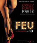 Feu: Crazy Horse Paris (3D & 2D Blu-ray)