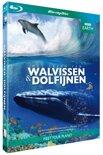 BBC Earth - Het Leven Van Walvissen En Dolfijnen (Blu-ray)