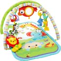 Fisher-Price 3-in-1 Muzikale Activity Gym - Speelkleed