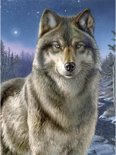 Schilderen Op Nummer - Wolf In De Nacht
