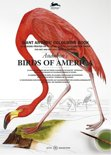 Audubon's Birds of America