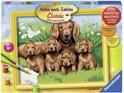 Ravensburger Schilderen op nummer: hondenfamilie