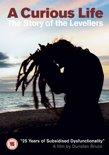 A Curious Life (CD+DVD)